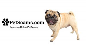 Petscams-Facebook-Share-2 -Partners