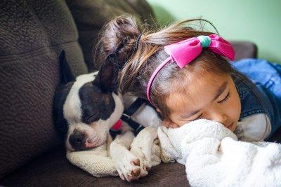 puppy - huskypalace