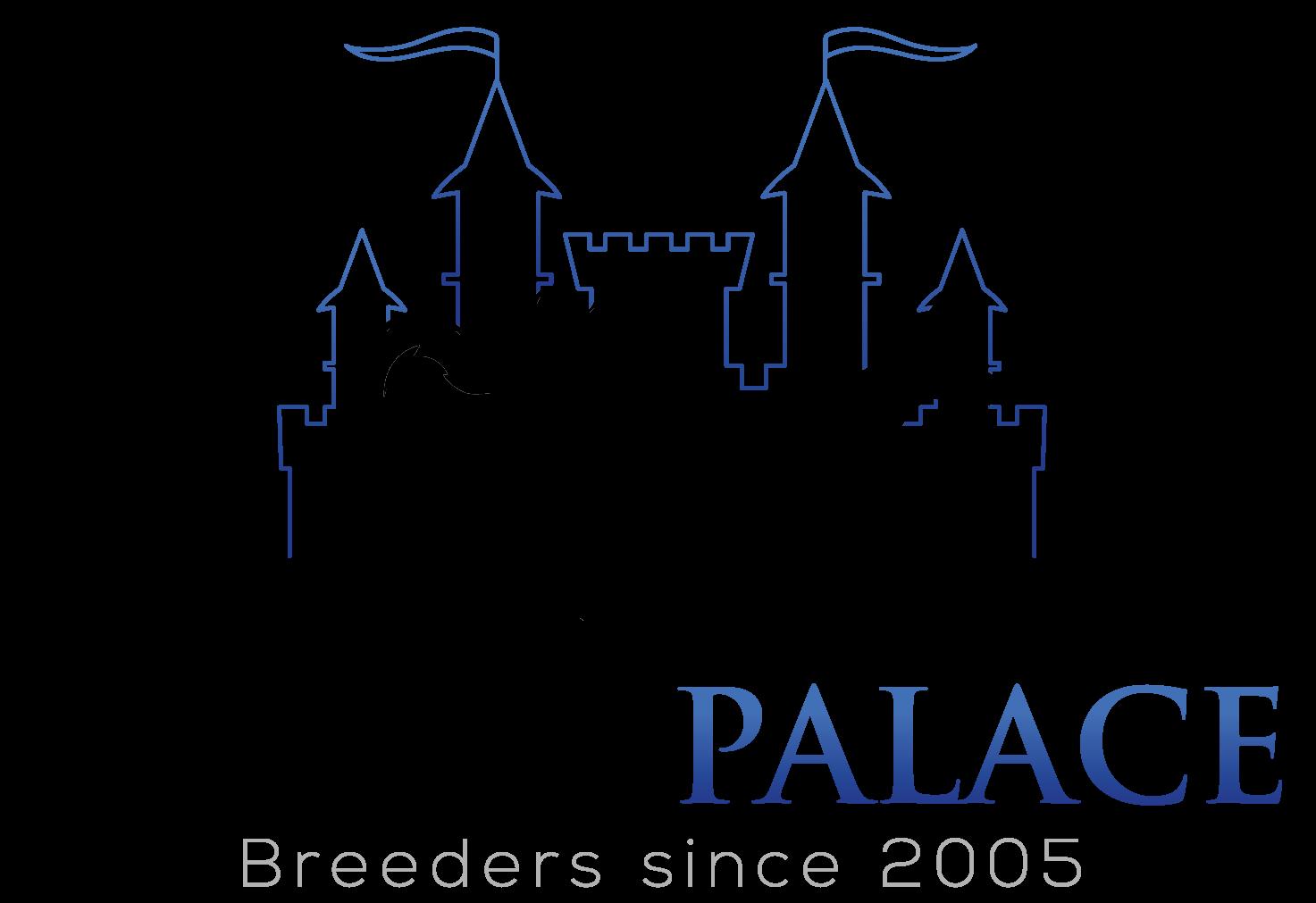 Husky Palace Logo